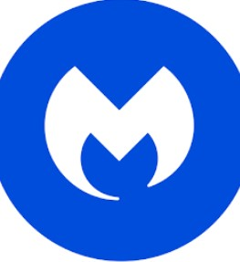 Malwarebytes 3.8.3 Key Cracked Full Version